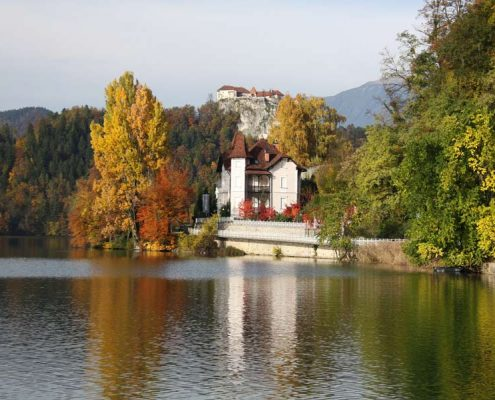 Mateja Petje Therapist Slovenia Home